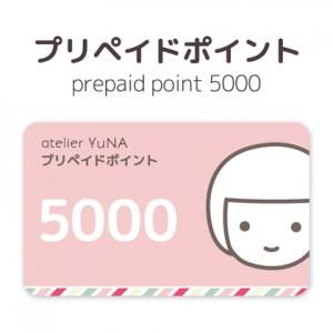 p100005000