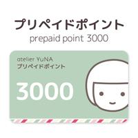 prepaid3000